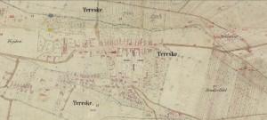tereske